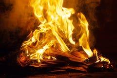 Σωροί του ξύλου απορρίματος στην πυρκαγιά Στοκ Εικόνα