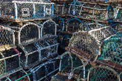 Σωροί Lobsterpots Στοκ Εικόνες