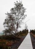 Σωρός Γερμανία Halde Alsdorf Στοκ φωτογραφία με δικαίωμα ελεύθερης χρήσης