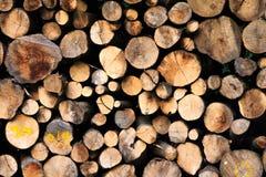 Σωρός ξυλειών Στοκ Φωτογραφίες