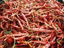 Σωρός ολόκληρου του ξηρού κόκκινου πιπεριού τσίλι Στοκ εικόνα με δικαίωμα ελεύθερης χρήσης