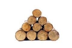 Σωρός σημύδων firewoods που απομονώνεται Στοκ Εικόνες