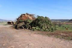 Σωρός σκουπιδιών που χτίζεται από townspeople σε προετοιμασία για την ετήσια φωτιά στοκ φωτογραφίες με δικαίωμα ελεύθερης χρήσης
