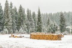 Σωρός της ξυλογραφίας με το χιόνι Στοκ Εικόνες