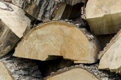 Σωρός της ξύλινης αποθήκευσης κούτσουρων Τα πριόνια κόβουν τα ξύλινα κούτσουρα στοκ φωτογραφία