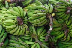 Σωρός της πράσινης μπανάνας σωρών Στοκ Φωτογραφία