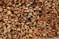 Σωρός του δάσους Στοκ εικόνα με δικαίωμα ελεύθερης χρήσης