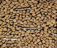 Σωρός του δάσους Στοκ Εικόνες