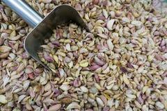 Σωρός του γαρίφαλου σκόρδου με dipper αργιλίου Στοκ Εικόνες