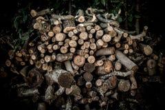 Σωρός του μεγάλου ξηρού κούτσουρου καυσόξυλου στοκ εικόνα με δικαίωμα ελεύθερης χρήσης