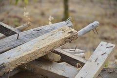 Σωρός του ξύλου 2 Στοκ Φωτογραφία