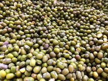 Σωρός του οργανικού πράσινου mung υποβάθρου φασολιών στοκ εικόνες