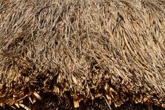 Σωρός του παλαιού ξηρού αχύρου Στοκ φωτογραφία με δικαίωμα ελεύθερης χρήσης