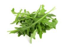 Σωρός του πράσινου φρέσκου φύλλου rucola ή arugula που απομονώνεται στο άσπρο υπόβαθρο Στοκ φωτογραφία με δικαίωμα ελεύθερης χρήσης
