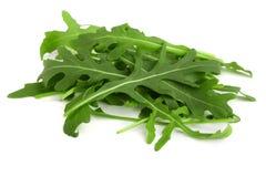 Σωρός του πράσινου φρέσκου φύλλου rucola ή arugula που απομονώνεται στο άσπρο υπόβαθρο Στοκ Εικόνες