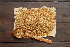Σωρός του σιταριού Kamut με ένα κουτάλι στοκ εικόνα με δικαίωμα ελεύθερης χρήσης