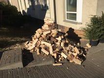 Σωρός του φρέσκου ξύλου περικοπών Στοκ φωτογραφίες με δικαίωμα ελεύθερης χρήσης