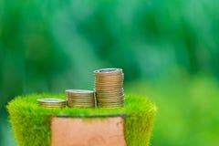 Σωρός του χρυσού νομίσματος στην τεχνητή χλόη στο δοχείο, με την πράσινη φύση Στοκ Φωτογραφία