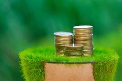 Σωρός του χρυσού νομίσματος στην τεχνητή χλόη στο δοχείο, με την πράσινη φύση Στοκ Εικόνες
