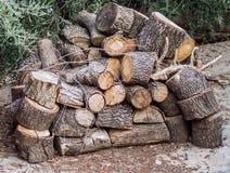 Σωρός των δασών Στοκ εικόνες με δικαίωμα ελεύθερης χρήσης