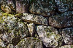 Σωρός των βράχων και των εγκαταστάσεων βρύου για το υπόβαθρο και την ταπετσαρία Στοκ εικόνα με δικαίωμα ελεύθερης χρήσης