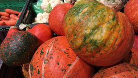 Σωρός των διαφορετικών μεγέθους πορτοκαλιών κολοκυθών στην αγορά Συγκομιδή φθινοπώρου ή πτώσης φιλμ μικρού μήκους