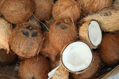 Σωρός των καρύδων στην αγορά τροφίμων της Ινδίας Στοκ φωτογραφία με δικαίωμα ελεύθερης χρήσης