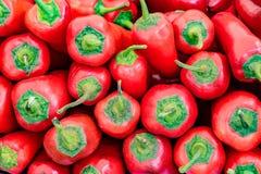 Σωρός των κόκκινων πιπεριών poblano Στοκ εικόνα με δικαίωμα ελεύθερης χρήσης