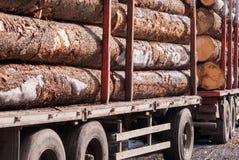 Σωρός των μεγάλων κορμών σε ένα βαγόνι εμπορευμάτων στοκ εικόνες με δικαίωμα ελεύθερης χρήσης