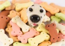Σωρός των μπισκότων σκυλιών με μορφή ενός κόκκαλου για το σκυλί Στοκ Φωτογραφίες