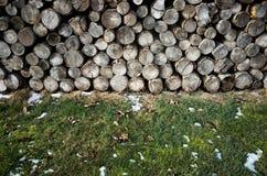 Σωρός των ξύλινων κούτσουρων Στοκ Εικόνα