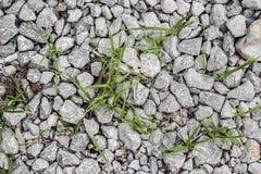 Σωρός των πετρών στη χλόη στοκ εικόνα με δικαίωμα ελεύθερης χρήσης