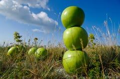 Σωρός των πράσινων μήλων Στοκ Φωτογραφίες