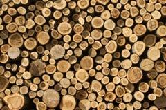 Σωρός των πριονισμένων κορμών δέντρων Στοκ Φωτογραφίες