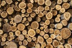 Σωρός των πριονισμένων κορμών δέντρων Στοκ εικόνες με δικαίωμα ελεύθερης χρήσης