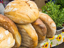 Σωρός των πρόσφατα ψημένων παραδοσιακών ψωμιών Στοκ Εικόνες