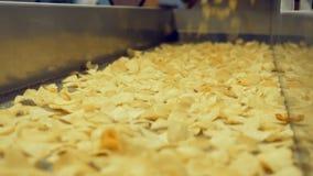 Σωρός των τηγανισμένων πατατακιών που πέφτουν επάνω σε μια γραμμή μετάλλων, που μεταφέρεται σε μια δυνατότητα απόθεμα βίντεο