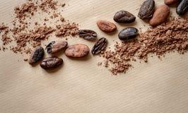Σωρός των φασολιών κακάου με τη σκόνη κακάου Στοκ φωτογραφία με δικαίωμα ελεύθερης χρήσης