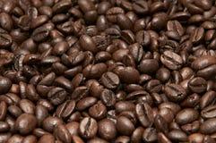 Σωρός των φασολιών καφέ Στοκ Εικόνα