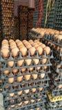 Σωρός των φρέσκων αυγών στους χονδρεμπόρους Στοκ φωτογραφία με δικαίωμα ελεύθερης χρήσης