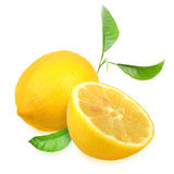 Φρέσκα κίτρινα λεμόνια με το πράσινο φύλλο στοκ εικόνα