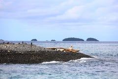 Σωρός των χαλικιών στην παραλία, Koh Hin Ngam, Θάλασσα Ανταμάν, σε Tarutao Στοκ Εικόνα