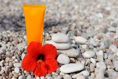 Σωρός των χαλικιών, της κρέμας και του λουλουδιού στην παραλία Στοκ εικόνες με δικαίωμα ελεύθερης χρήσης