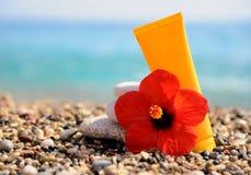 Σωρός των χαλικιών, της κρέμας και του λουλουδιού στην παραλία Στοκ Φωτογραφίες