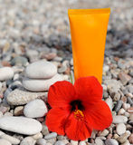 Σωρός των χαλικιών, της κρέμας και του λουλουδιού Στοκ εικόνα με δικαίωμα ελεύθερης χρήσης