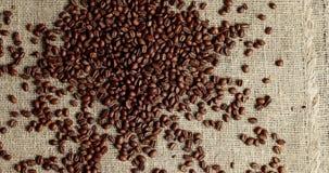 Σωρός των ψημένων φασολιών καφέ φιλμ μικρού μήκους