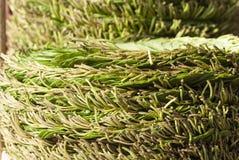 Σωρός betel των φύλλων στοκ εικόνα με δικαίωμα ελεύθερης χρήσης