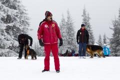 Σωτήρες Ερυθρών Σταυρών με τα σκυλιά Στοκ φωτογραφία με δικαίωμα ελεύθερης χρήσης