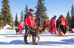 Σωτήρες υπηρεσιών διάσωσης βουνών με τα σκυλιά διάσωσης Στοκ Φωτογραφία