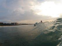 Σωλήνας Surfer Στοκ Εικόνες